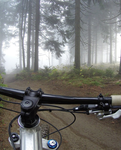 In Mountain Bike
